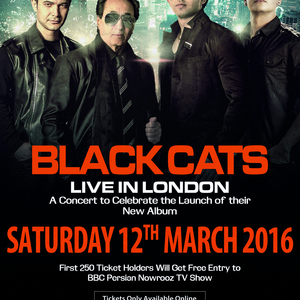 Black Cats Live in London