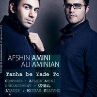 Afshin Amini & Ali Aminian - 'Tanha Be Yade To'