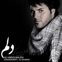 Ali Abdolmaleki - 'Delam'