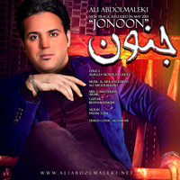 Ali Abdolmaleki - 'Jonoon'