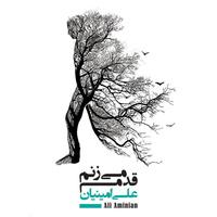 Ali Aminian - 'Asir'