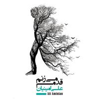 Ali Aminian - 'Hasti'