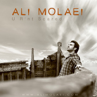 Ali Molaei - 'To Nemitarsi'