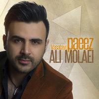 Ali Molaei - 'Vasataye Paeize'