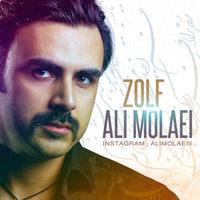 Ali Molaei - 'Zolf'
