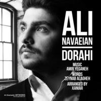 Ali Navaeian - 'Dorahi'
