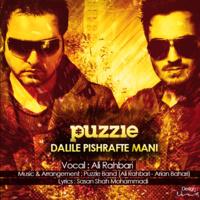 Ali Rahbari - 'Dalile Pishrafte Mani (Puzzle Band Radio Edit)'