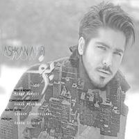 Ashkan Amiri - 'Barf'