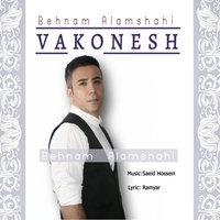 Behnam Alamshahi - 'Vakonesh'