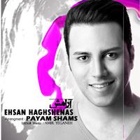 Ehsan Haghshenas - 'Aramesh'