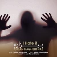 Ehsan Haghshenas - 'Bizaram'