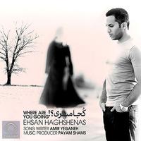 Ehsan Haghshenas - 'Koja Miri'