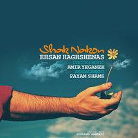 Ehsan Haghshenas - 'Shak Nakon'