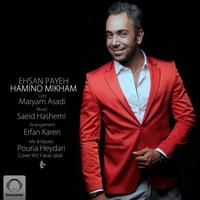 Ehsan Payeh - 'Hamino Mikham'