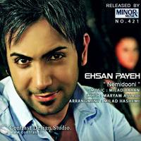 Ehsan Payeh - 'Nemidooni'