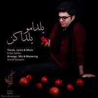 Erfan Salimi - 'Yaldamo Yalda Kon'