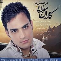 Kamran Molaei - 'Derakhte Zard'