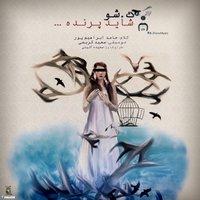 K.Show - 'Shayad Parande'