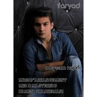 Meysam Najafi - 'Faryad'