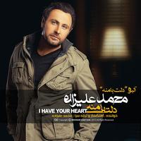 Mohammad Alizadeh - 'Shahre Baran'
