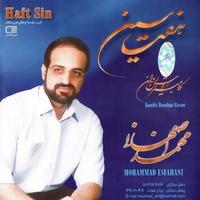 Mohammad Esfahani - 'Arame Jan'