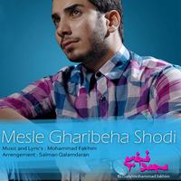 Mohammad Fakhim - 'Mesle Gharibeha Shodi'