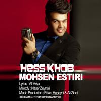 Mohsen Estiri - 'Hess Khob'
