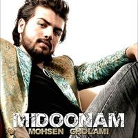 Mohsen Gholami - 'Midoonam'