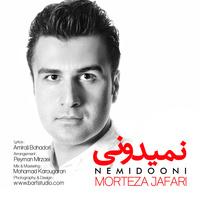 Morteza Jafari - 'Nemiduni'