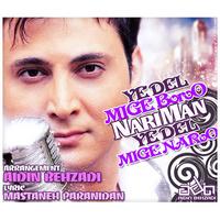 Nariman - 'Ye Del Mige Boro Ye Del Mige Naro'