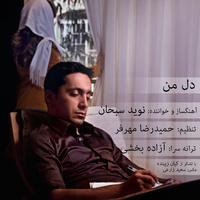 Navid Sobhan - 'Dele Man'