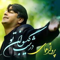 Parvaz Homay - 'Divaane Tari'