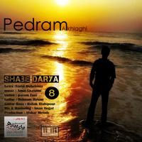 Pedram Akhlaghi - 'Shabe Darya'