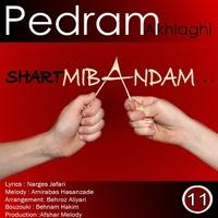 Pedram Akhlaghi - 'Shart Mibandam'