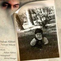 Pedram Alikhani - 'Tavalodet Mobarak'