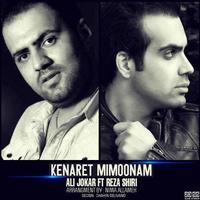Reza Shiri - 'Kenaret Mimoonam (Ft Ali Jokar)'