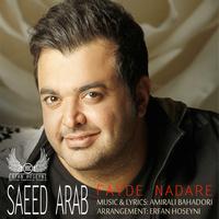 Saeed Arab - 'Fayde Nadare (Remix)'