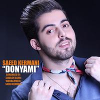 Saeed Kermani - 'Donyami'