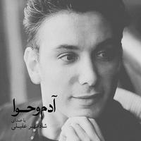 Shadmehr Aghili - 'Dele Man Toro Mikhad'
