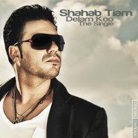 Shahab Tiam - 'Delam Koo'
