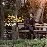 Shahriyar Shahbazi - 'Bargard'