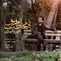 Shahriyar Shahbazi - 'Khoobe Man'