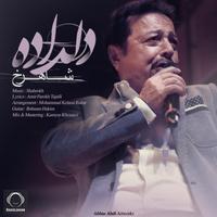 Shahrokh - 'Deldadeh'