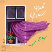 Sina Hejazi - 'Goldoone Shamdooni'
