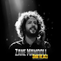 Sina Hejazi - 'Zane Mamooli'